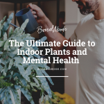 The Ultimate Guide to Indoor Plants and Mental Health